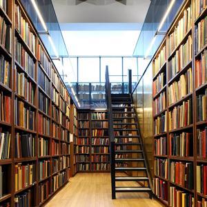 Библиотеки Озерска